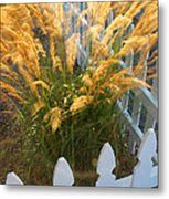 Wind In The Grass Metal Print