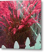 Wind In The Grass - Red Metal Print