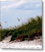 Wind In The Seagrass Metal Print