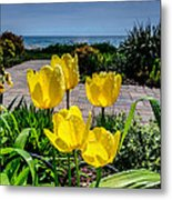 Wind Point Tulips Metal Print