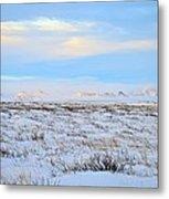 Wind Swept Plains Of Iceland Metal Print