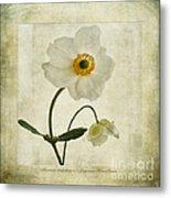 Windflowers Metal Print