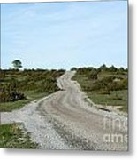 Winding Gravel Road Through A Landscape With Lots Of Junipers Metal Print