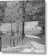 Winding Road In Wilderness Black And White Metal Print by Sherri Duncan