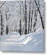 Winding Snowy Road In Winter Metal Print