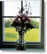 Window Candy Metal Print by Will Boutin Photos