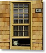Window Cat    No.1 Metal Print