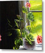 Window Geranium Metal Print
