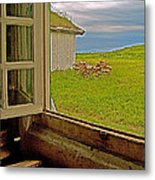 Window On Sod-covered Roof In Louisbourg Living History Museum-1744-ns Metal Print