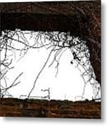 Window Through Time Metal Print