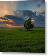 Windows Sd Metal Print