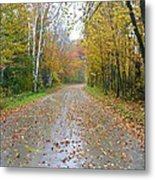 Windy And Rainy Fall Day Metal Print