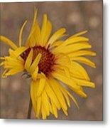 Windy Flower Metal Print