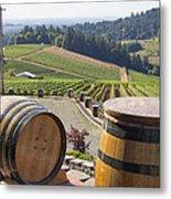Wine Barrels In Vineyard Metal Print