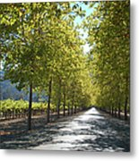 Wine Country Napa Metal Print