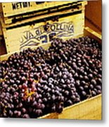 Wine Grapes II Metal Print