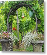 Winery In Victoria Bc Metal Print
