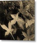 Wing Of Angels Sepia Tone Metal Print