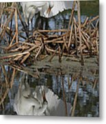 Wing Up Reflection Metal Print