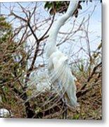 Winged Grace 2 Metal Print