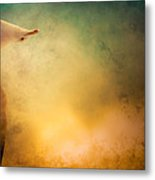 Wings Of Freedom Metal Print by Loriental Photography