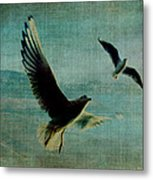 Wings Over The World Metal Print