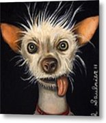 Winner Of The Ugly Dog Contest 2011 Metal Print