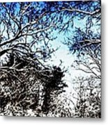 Winter Along The Bronx River Metal Print