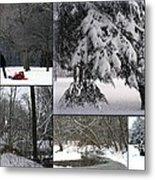 Winter At Petrifying Springs Park Metal Print