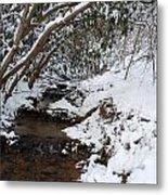 Winter At The Creek Metal Print