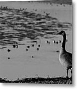 Winter At The Shores4 Metal Print