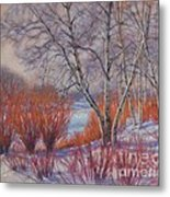 Winter Birches And Red Willows 1 Metal Print