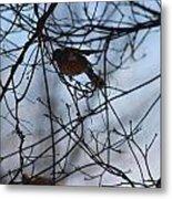 Winter Birds 2 Metal Print