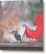 Winter Blue Jay #2 Metal Print
