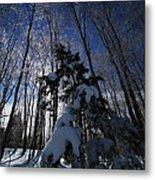 Winter Blue Metal Print