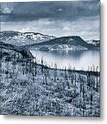 Winter Blues Metal Print by Rod Sterling