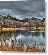 Winter Cattails By The Lake Metal Print