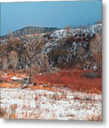 Winter Colors 2 Metal Print
