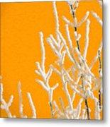 Winter Colors Metal Print