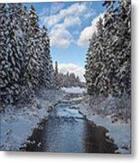 Winter Creek Metal Print by Fran Riley