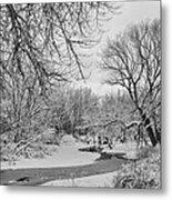 Winter Creek In Black And White Metal Print