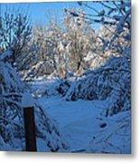 Winter Day II Metal Print