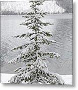Winter Decor Metal Print