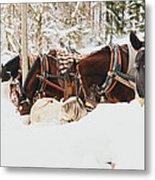Horses Eating In Snow Metal Print