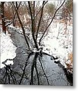 Winter Ditch Metal Print