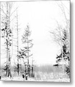 Winter Drawing Metal Print by Jenny Rainbow