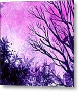 Winter Dreams  Metal Print