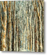 Winter Dreams Metal Print