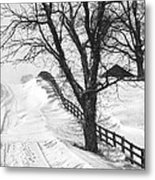 Winter Driveway Metal Print