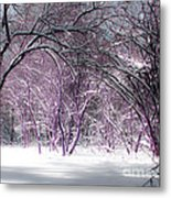 Winter Faeries Metal Print